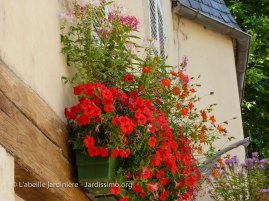 20120803 - Yonne - Clamecy - bac fleuri