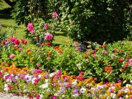 20120804 - Cher - jardin particulier 3