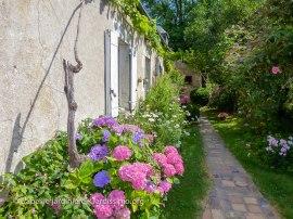 20120804 - Cher - jardin privé 2