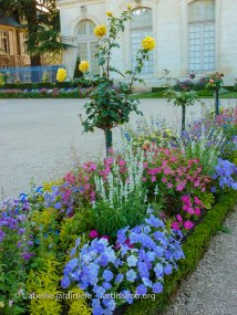 20120809 - Cher - Bourges - parterre 5