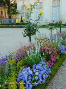 20120809 - Cher - Bourges - parterre 5