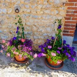 20120810 - Cher - jardin particulier