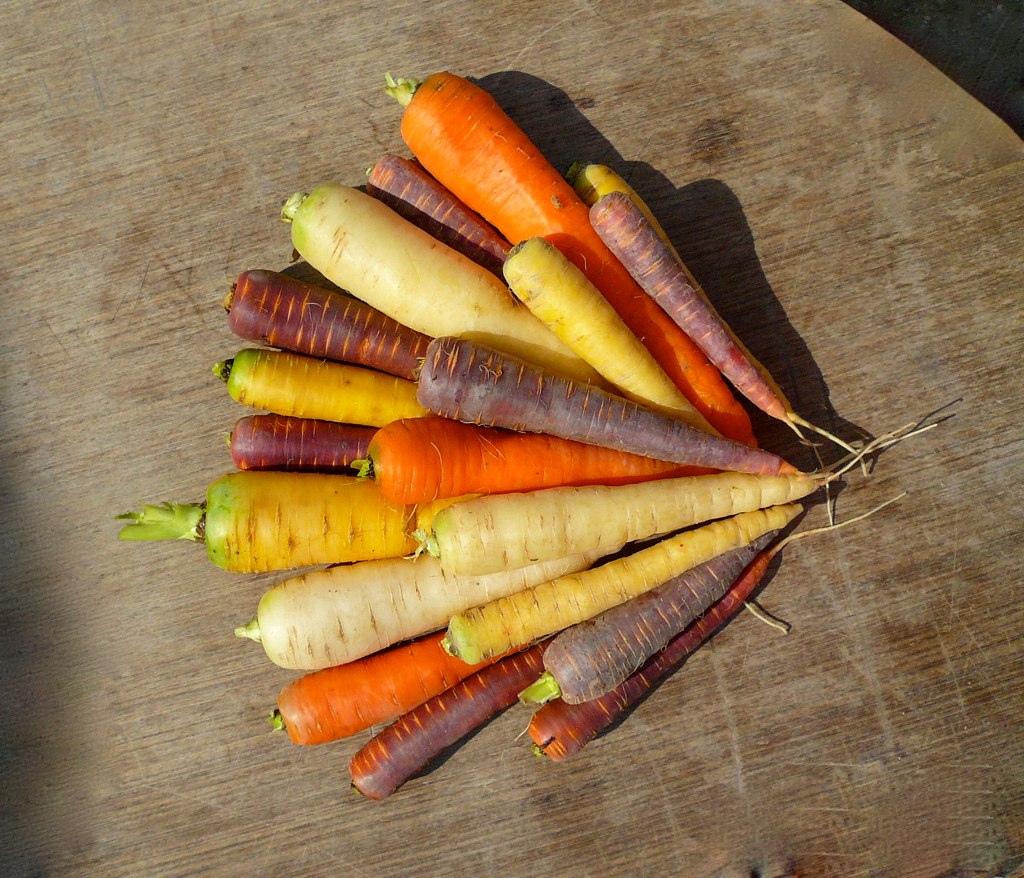 O trouver des carottes de couleurs vari es jardissimo - Que cuisiner avec des carottes ...
