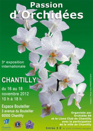 Affiche exposition Chantilly 2012 - Passion d'Orchidées