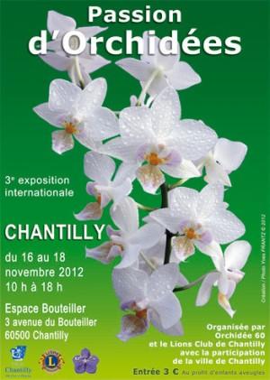 Affiche exposition Chantilly 2012 - Passion d'Orchidées