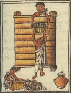 Aztèques ensilant du maïs