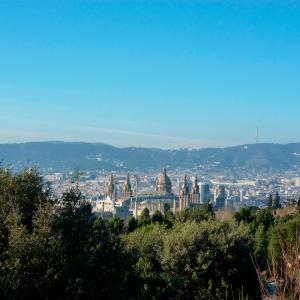 Vue sur Barcelone et le musée d'art catalan