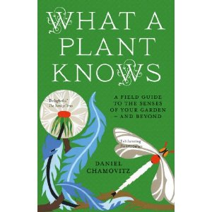 What a Plant Knows, from Daniel Chamovitz