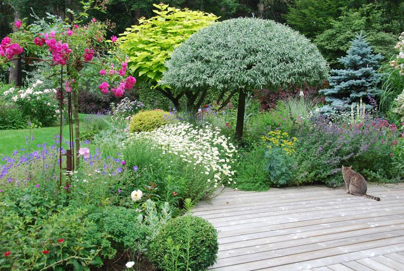 Organiser une f te de jardin n est pas une sin cure for Organiser jardin
