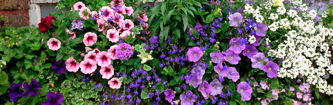 jardiniere de fleurs